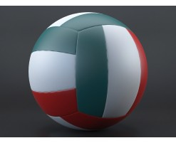 Ballon de volley 1