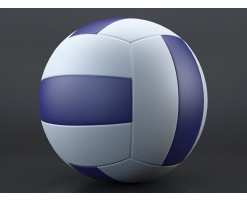 Ballon de volley 2