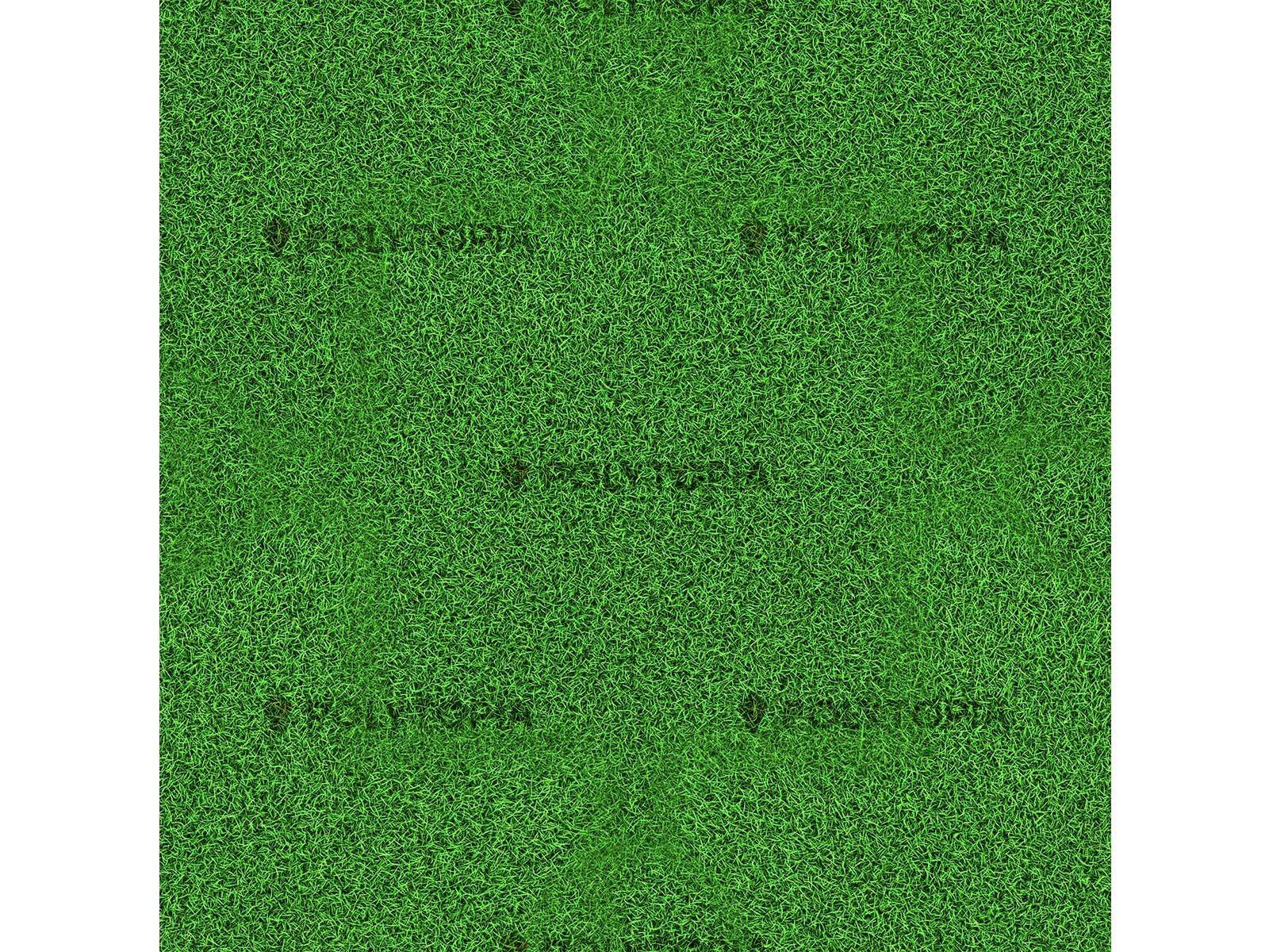 Texture herbe 1