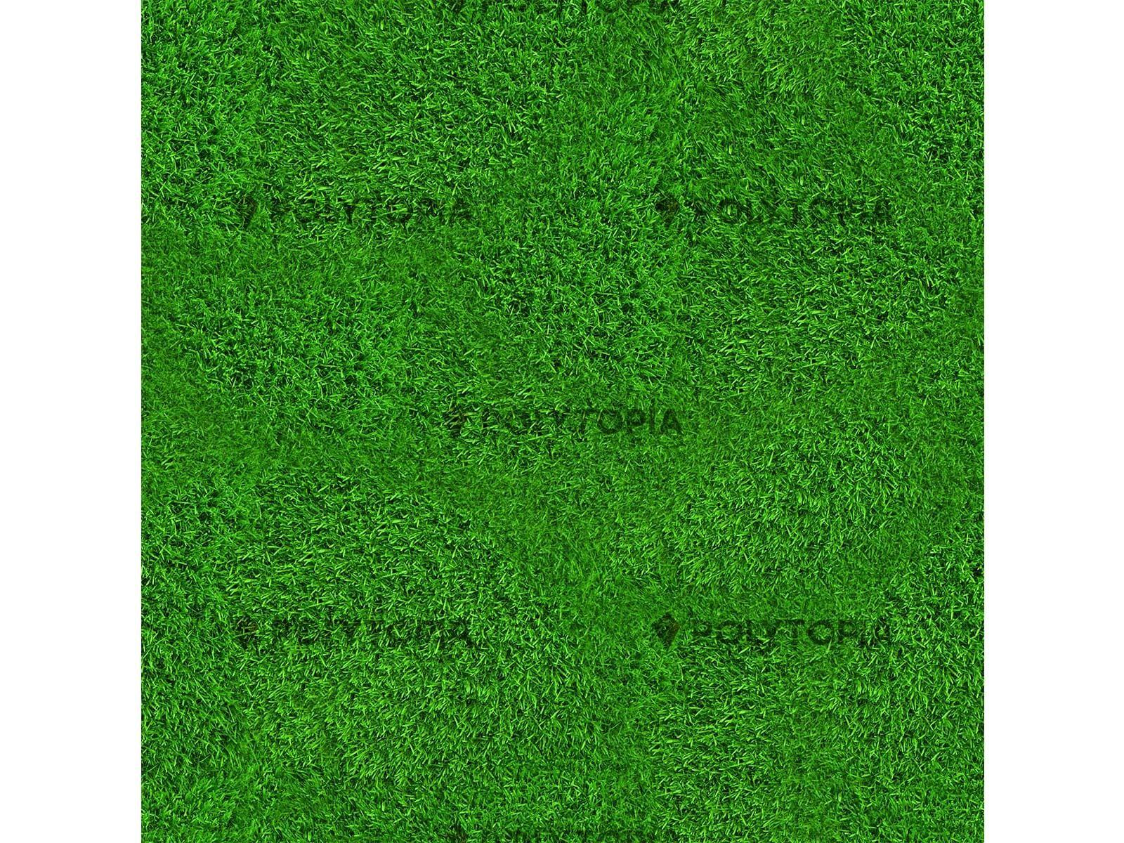 Texture herbes 2
