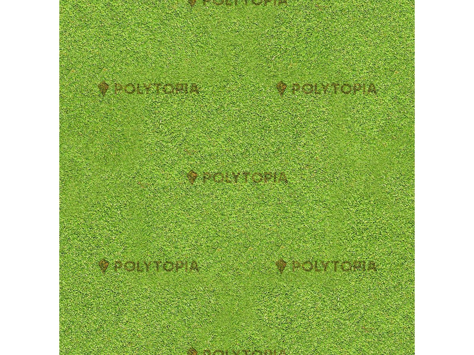 Texture herbes 4