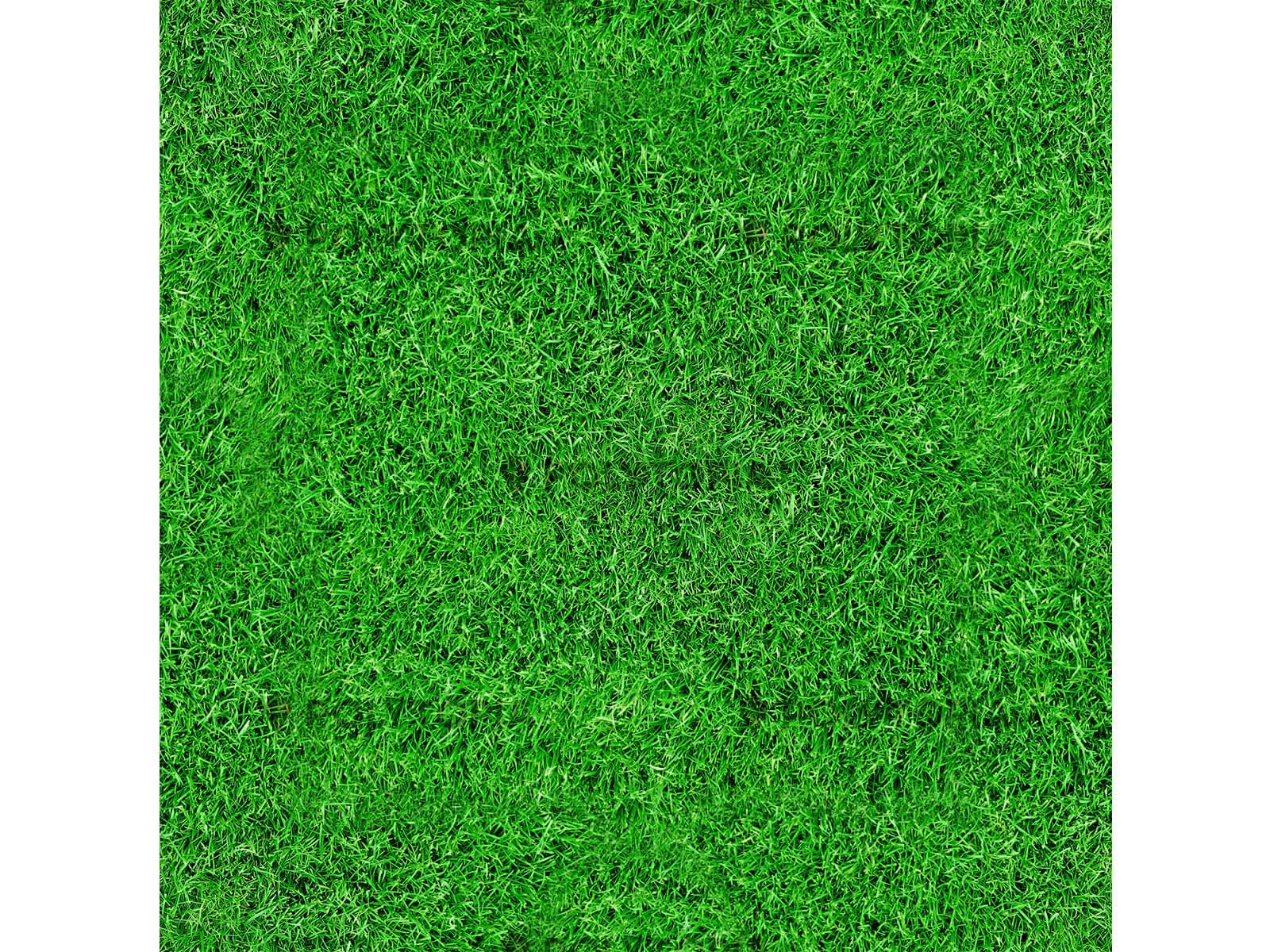 Texture herbes 5