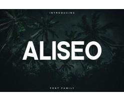 Aliseo Police d'écriture - Sans Serif